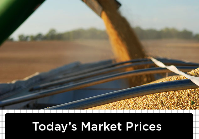 CHSFarmersAlliance_MarketPrices